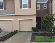 8919 Turnstone Haven Place, Tampa image
