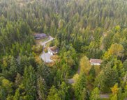 3294/3304 Colpman  Rd, Duncan image