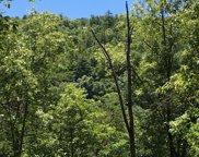 840 Steer Creek Rd, Tellico Plains image