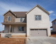 46 Reserve at Hickory Wild, Clarksville image