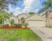 3334 HIGHLAND MILL LN, Orange Park image
