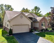 17254 Lake View Cir, Northville image
