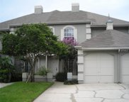 14123 Trouville Drive, Tampa image