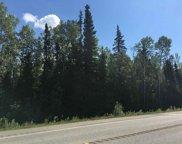 NHN Richardson Highway, Salcha image