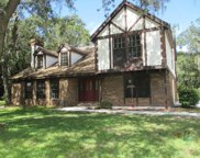 11207 Donneymoor Drive, Riverview image