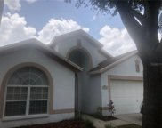 3308 Red Mulberry Court, Tampa image