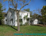 828 Branch Street, Ionia image