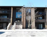 6110 Knoll Valley Drive Unit 102, Willowbrook image