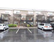 3825 Cherokee Woods Way Unit Apt 203, Knoxville image