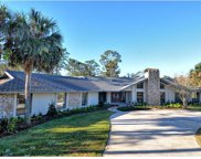 103 Amberwood Court, Longwood image