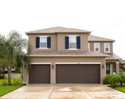 3628 Chandler Estates Drive, Apopka image