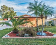 10456 Orange Blossom Lane, Seminole image