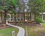 11283 N Wakefield Dr, St Francisville image