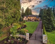 13636 202nd Ave NE, Woodinville image