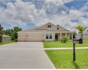 1087 Rock Creek Street, Apopka image