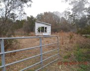 12315 Country Side Drive, Lakeland image