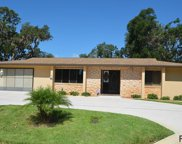 48 Florida Park Dr, Palm Coast image