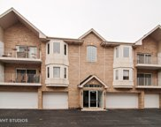 5331 West Mint Julip Drive Unit 301, Alsip image