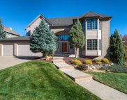 12 Golden Aster, Littleton image
