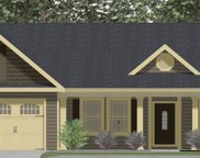 368 Long Branch Road Lot 3, Chesnee image