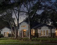 32106 Red Tail Boulevard, Sorrento image