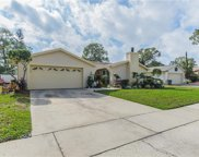 7506 Willow Court, Tampa image
