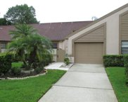 3984 Mermoor Drive, Palm Harbor image