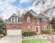 10406  Old Brassle Drive, Mint Hill image