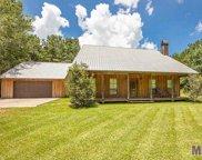 27815 Red Oak Rd, Livingston image