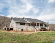 1295 Crawford Cove Rd, Springville image