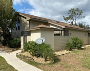 13315 Broadhurst Loop, Fort Myers image