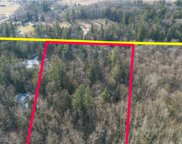 9092 Stein Rd, Custer image