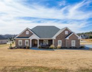 203 Chestnut Springs Way, Williamston image
