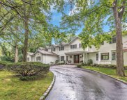 343 Oyster Bay  Road, Mill Neck image