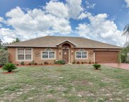 1742 Minnow Court, Kissimmee image