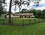 12501 Clydesdale Court, Tampa image