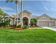 12007 Marblehead Drive, Tampa image