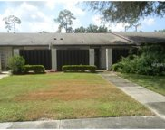 1044 Medinah Drive, Winter Haven image