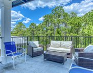 208 Blue Crab Loop, Inlet Beach image
