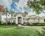 12306 Marblehead Drive, Tampa image