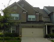 3137 Hartson Pointe  Drive, Indian Land image