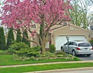 463 Glenmore Place, Roselle image