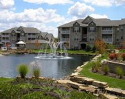 250 Scenic Cove Unit #250, St Charles image