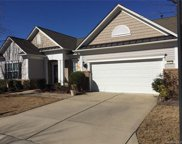 33121  Tanager Court, Indian Land image