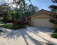 643 Conservation Dr, Weston image