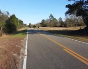22003 County Road 68, Robertsdale image