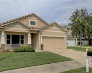 6807 S Court Drive, Tampa image