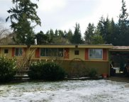 22051 SE 300th St, Black Diamond image