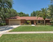 16109 Ancroft Court, Tampa image