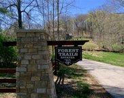820 Forest Circle Trail, Ballwin image